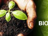 Biohumus / Vermicompost / Natural fertilizer - фото 1