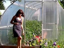 Försäljning av växthus från tillverkaren i Vitryssland