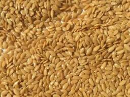 We offer our harvest of 2018: golden flax and confectionery - фото 1
