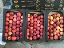 Яблоки apples - фото 5